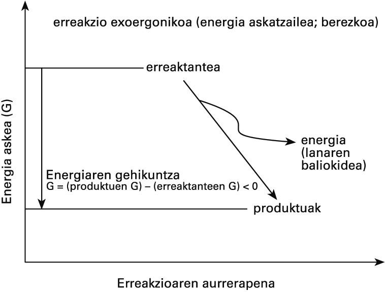 Berezko erreakzioen energetika